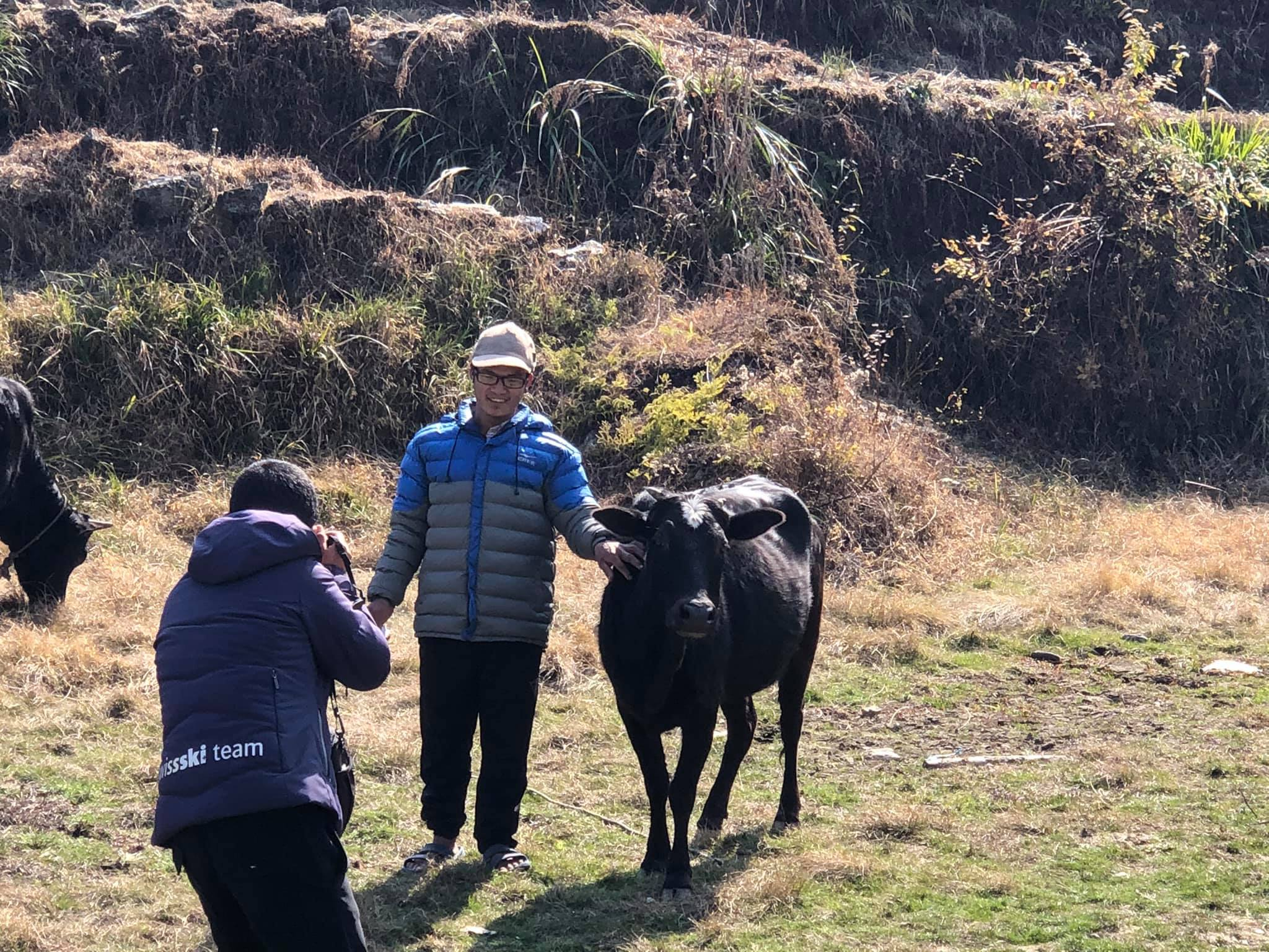 Cow Distribution Project